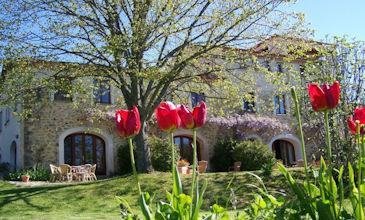 French holiday homes, Aude, Languedoc with pool